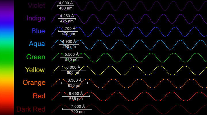 The wavelengths of different colors in the visible spectrum.