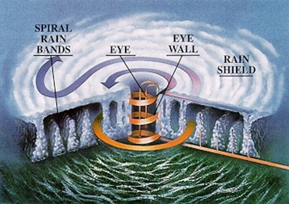 The eyewall forms the edges of a hurricane's eye and is the location of the most intense wind and rain.