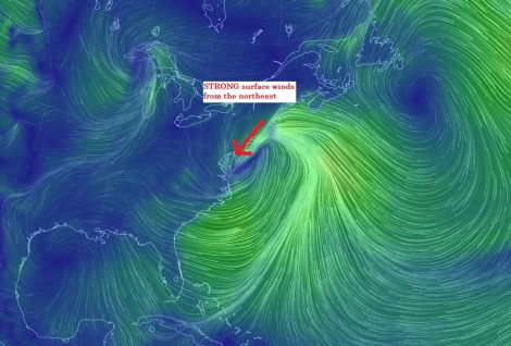 A great shot of strong northeast surface winds. As shown on http://earth.nullschool.net/ (A bookmark for any weather enthusiast!)