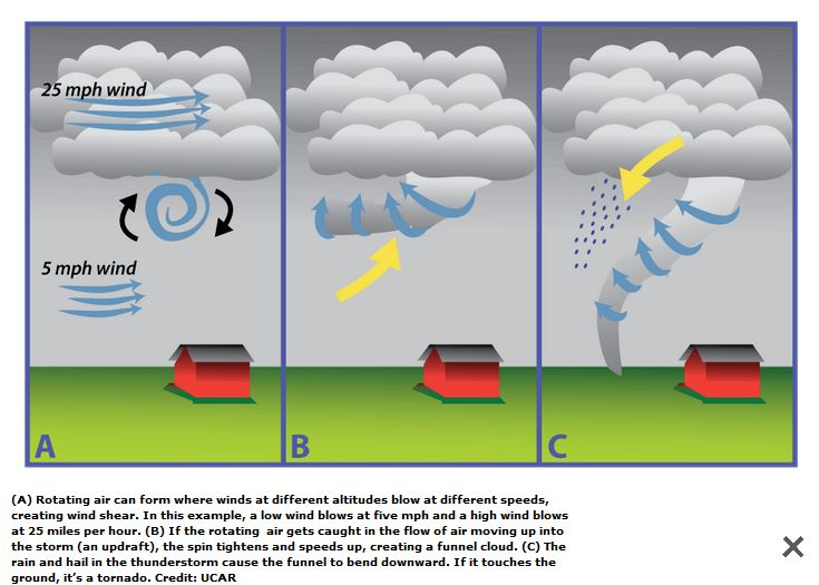 With a tornado, the wind shear is above the surface and there is an updraft up into a storm cell.