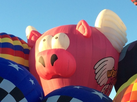 """When Pigs Fly"" was a crowd favorite."