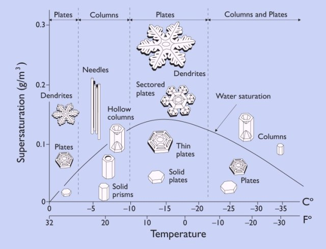 The shape a snowflake takes depends on temperature and humidity. From http://www.its.caltech.edu/~atomic/snowcrystals/primer/primer.htm